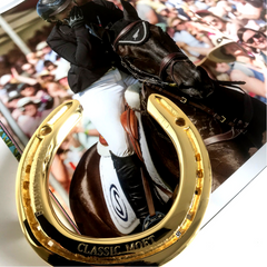 Jonelle Price's 2018 Mitsubishi Motors Badminton Horse Trials Winning Horseshoe Memento off Classic Moet
