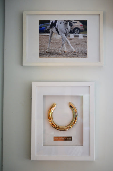 Southern Boy's Framed Horseshoe Memento on the wall