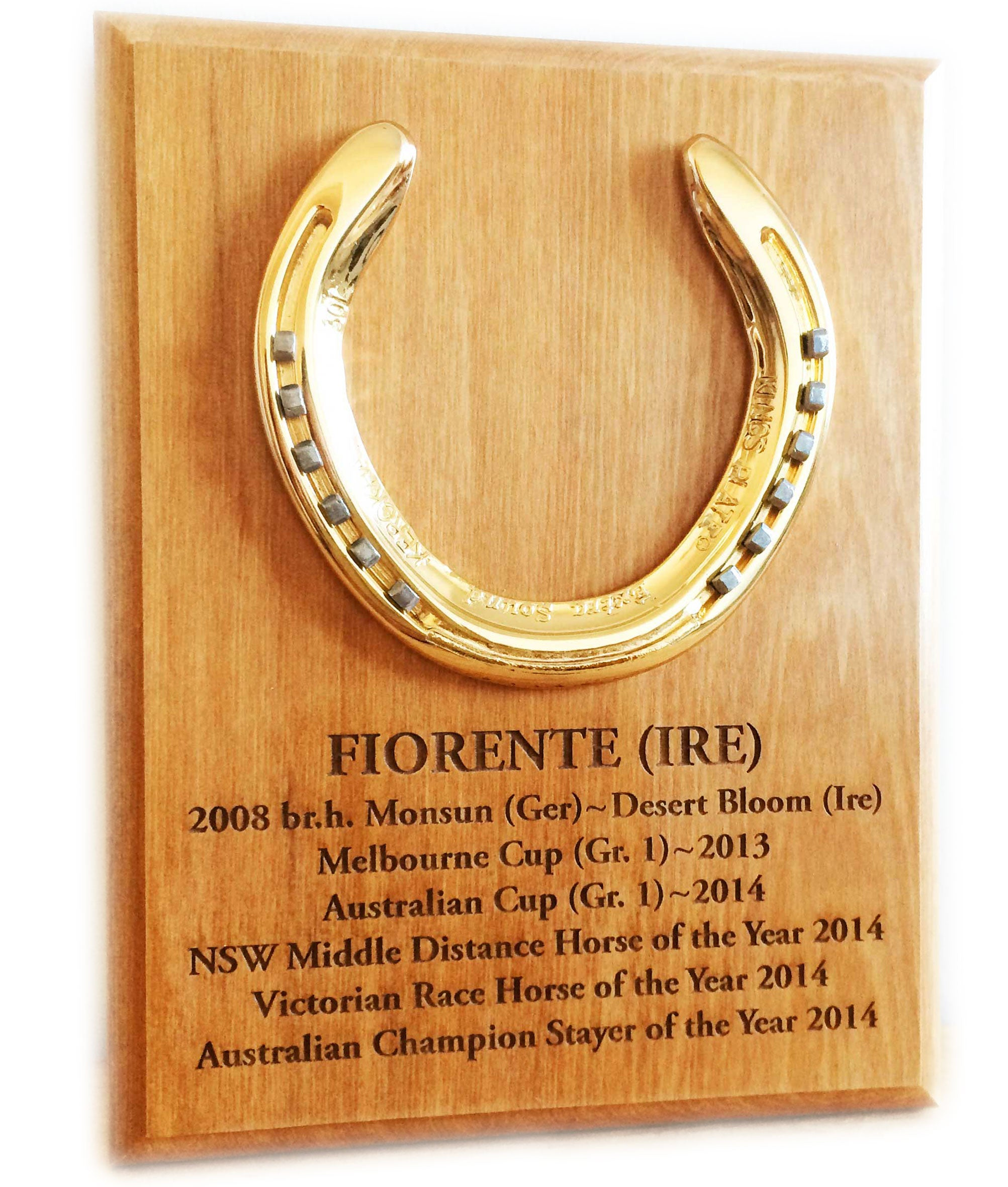 Horseshoe Memento Plaques - Horseshoe Mementoes