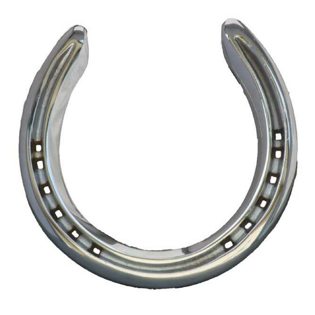 Chrome Horseshoe - Horseshoe Mementoes