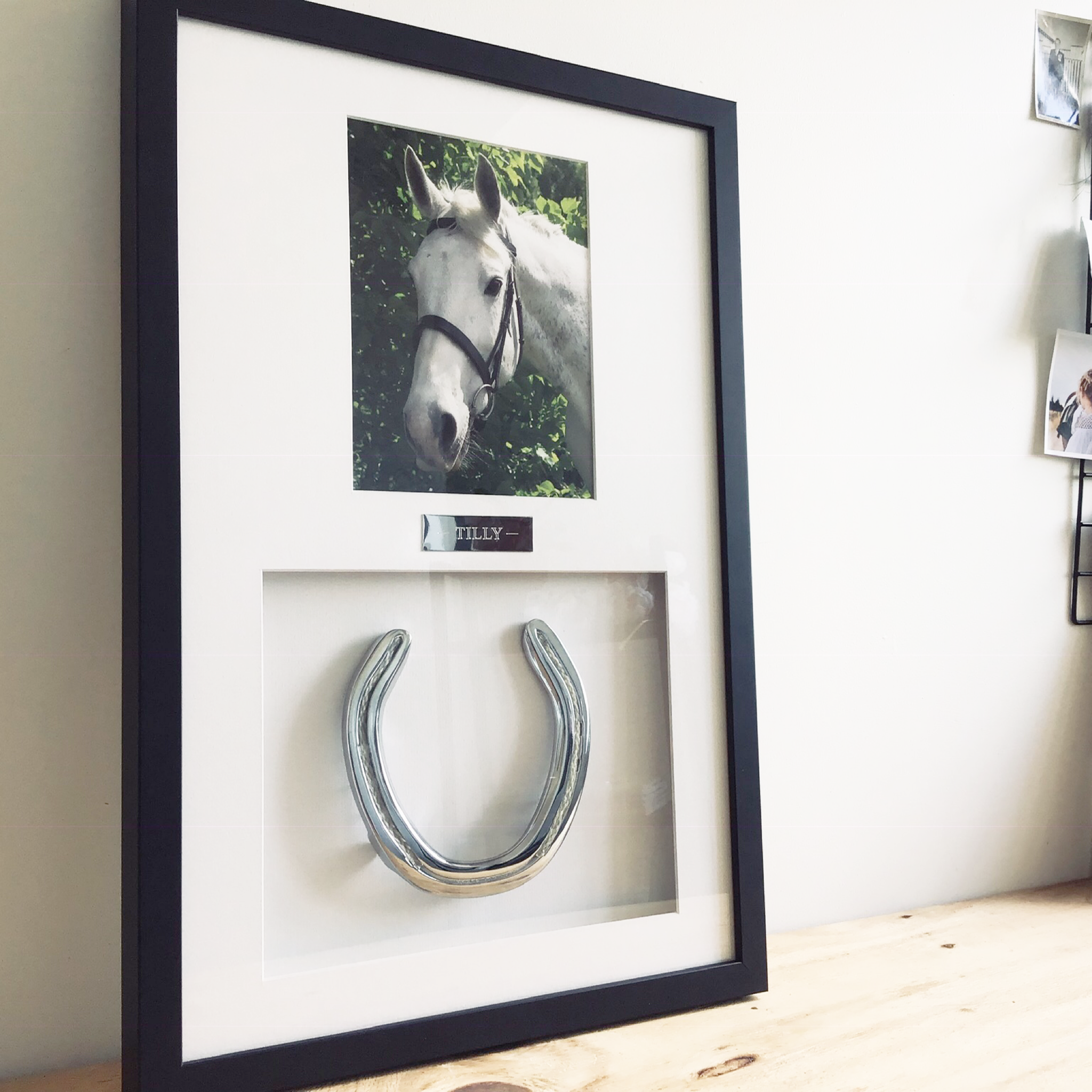 Framed Horseshoe with Horse Hair Braid and Photo - Horseshoe Mementoes