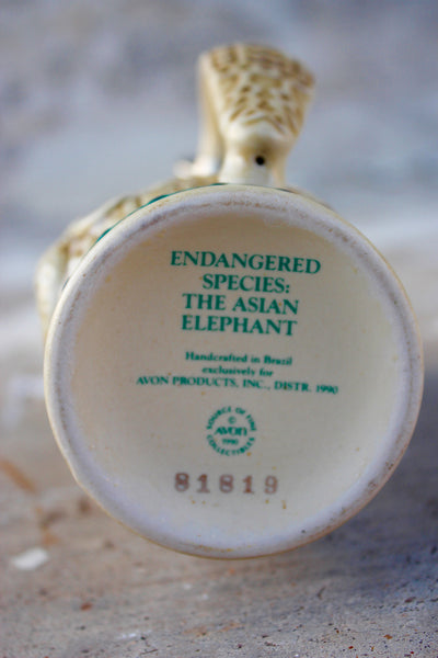 Asian Elephant Mini Stein