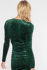 Evergreen Velour Snake Print Dress