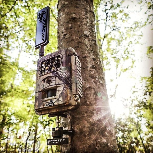 So You Want To Buy A Cellular Trail Camera