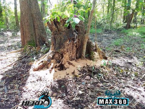 Max 360 Deer Mineral Stump