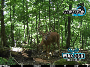 Max 360 Deer Mineral Free Ship on 20lb