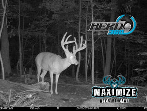 Max 360 Deer Mineral Free Ship on 34lb