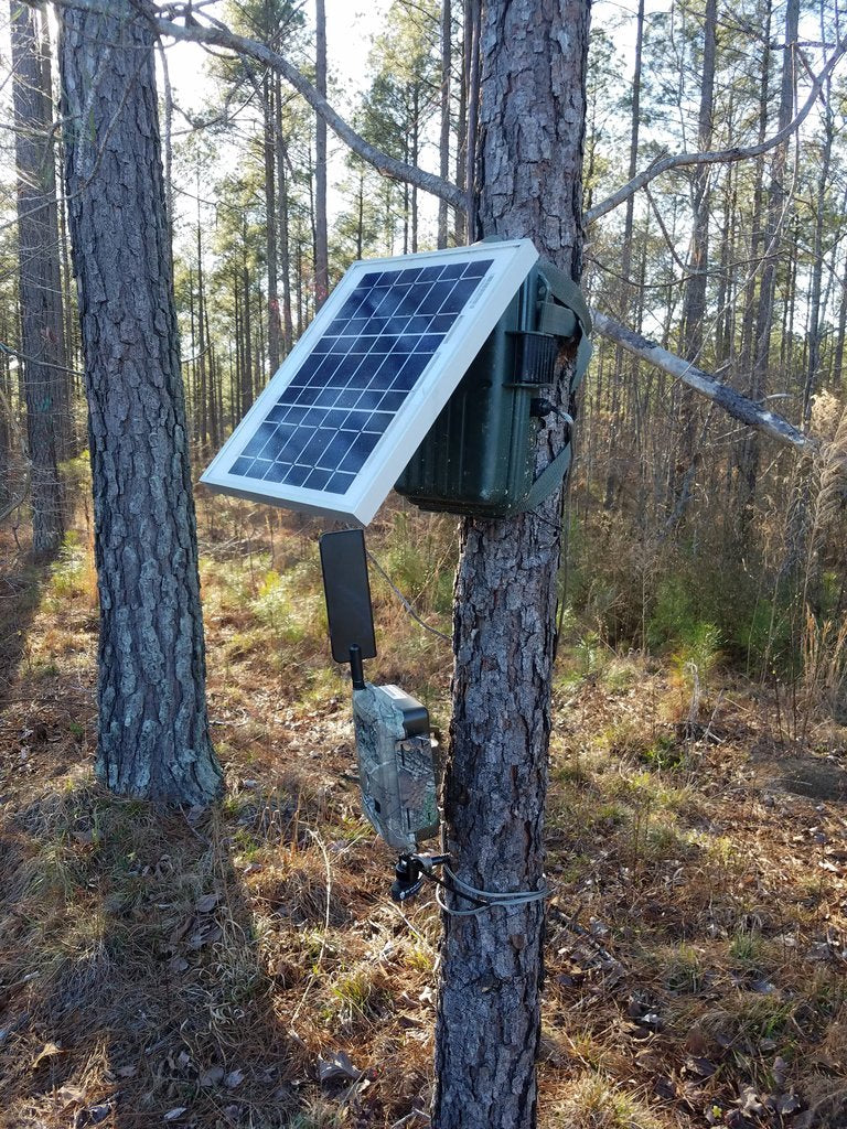 Best Solar external battery box for cellular trail cameras