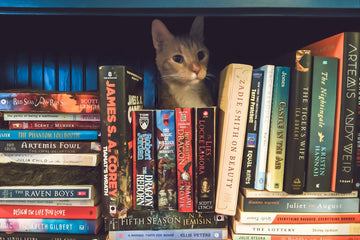 Heist Novels for the Aspiring Cat Burglar