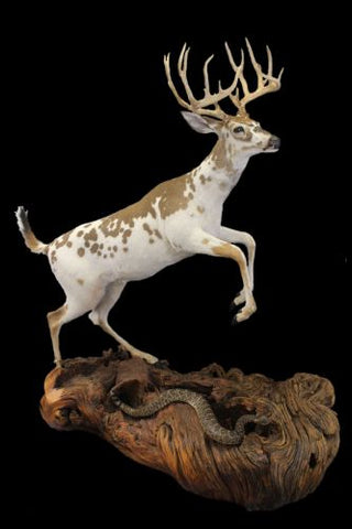 pedestal deer mount