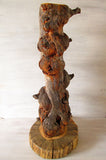 Burl Pine Taxidermy Pedestal - Shipping Included