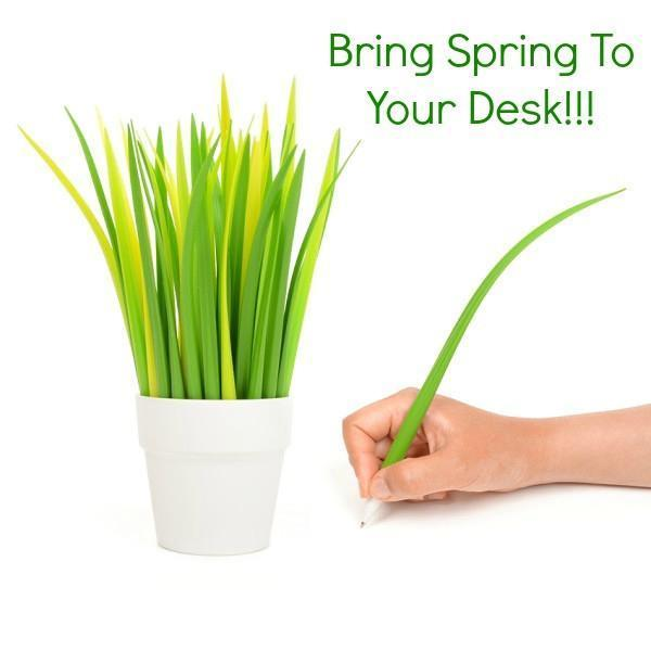 Bring Spring To Your Desk!!!