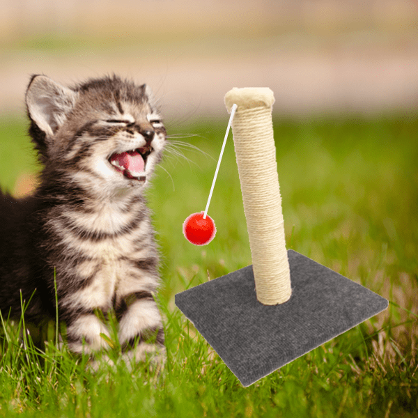 """Cat Toy Scratch Post"" With Hanging Ball Exerciser"