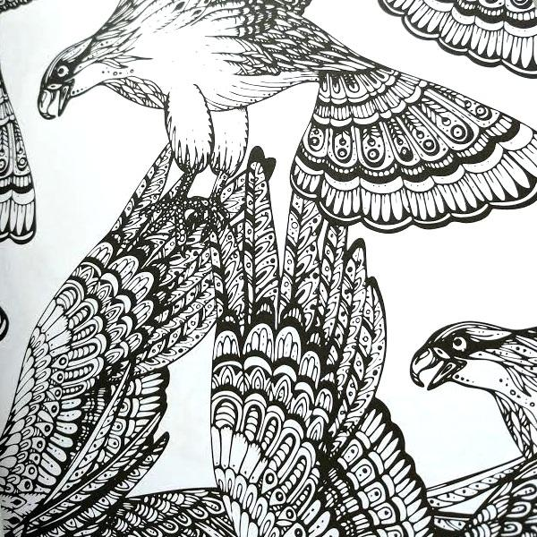 Adult Coloring Book - Everyone Loves Coloring Birds   eFizzle