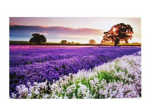 """Lavender Field"" - 1000 Pieces Jigsaw Puzzles"