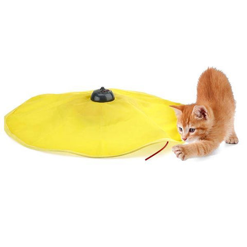 Pets - Cat's Meow: Peek-A-Boo Motorized Cat Toy