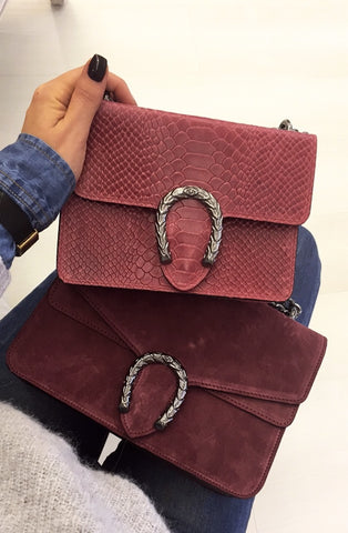 Dion Mini Shoulder Bag Leather Indian Red