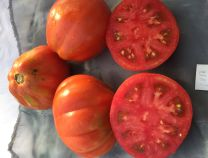 Abruzzese Red Pear Tomato