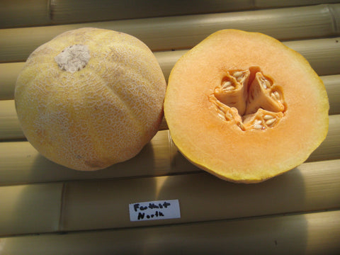 Farthest North Melon