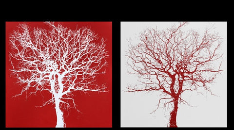 Red Oak I & II