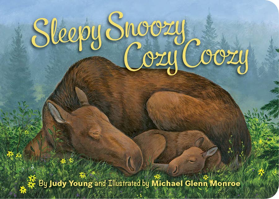 Sleepy Snoozy Cozy Coozy Toddler Board Book