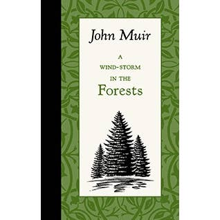 A Wind-Storm in the Forests - John Muir. Hardback