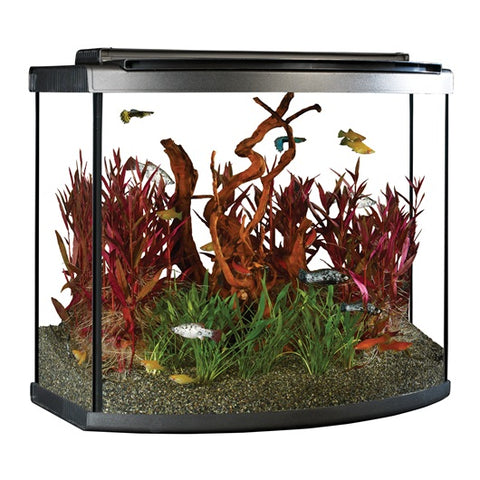 Fluval 26 gal LED Bow Aquarium Kit