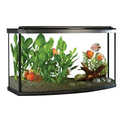 Fluval 45 gal LED Bow Aquarium Kit