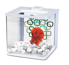 Marina EZ Care Betta Kit - White