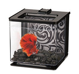 Marina EZ Care Betta Kit - Black