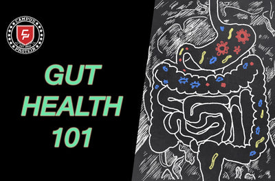 Why Is Gut Health So Important and How You Can Improve Gut Health