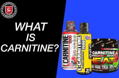 CARNITINE Supplements Fully Explained