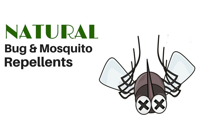 Natural Bug Repellents (for mosquitoes and other pesky bugs!)