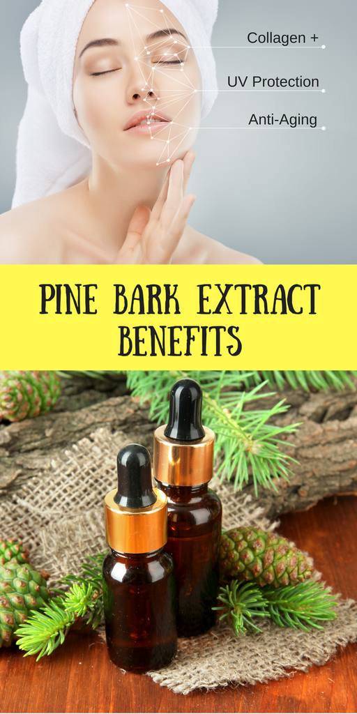 Pine Bark Extract Skin Benefits