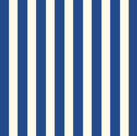 Canvas Corp Papers - Navy & Ivory Big Stripe Cardstock