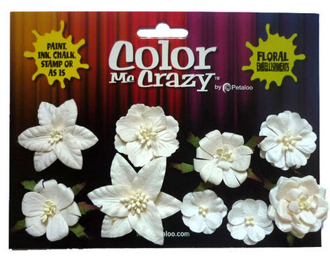 Petaloo Color Me Crazy Flowers