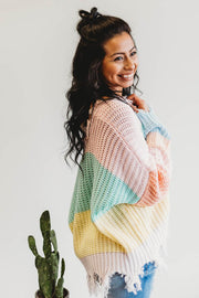 Pastel Colorful Distressed Sweater  Roselynn's