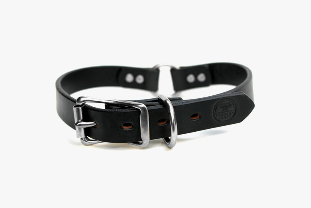 Black Dog Collar - Silver Buckles - Standing Up