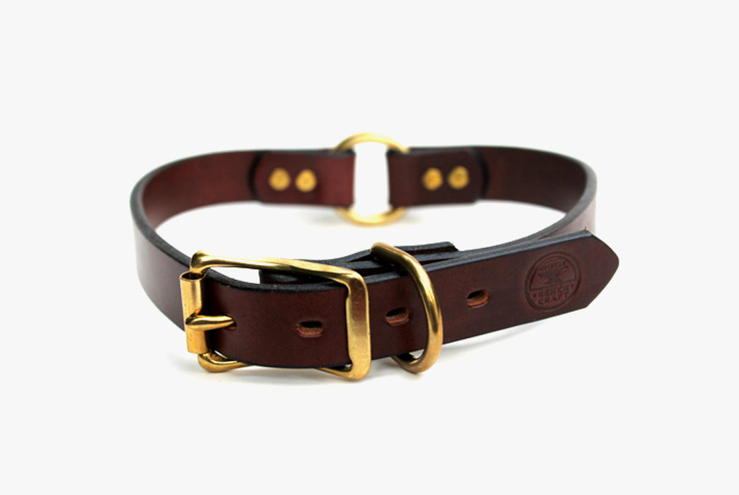 Brown Dog Collar Standing Up - Front View