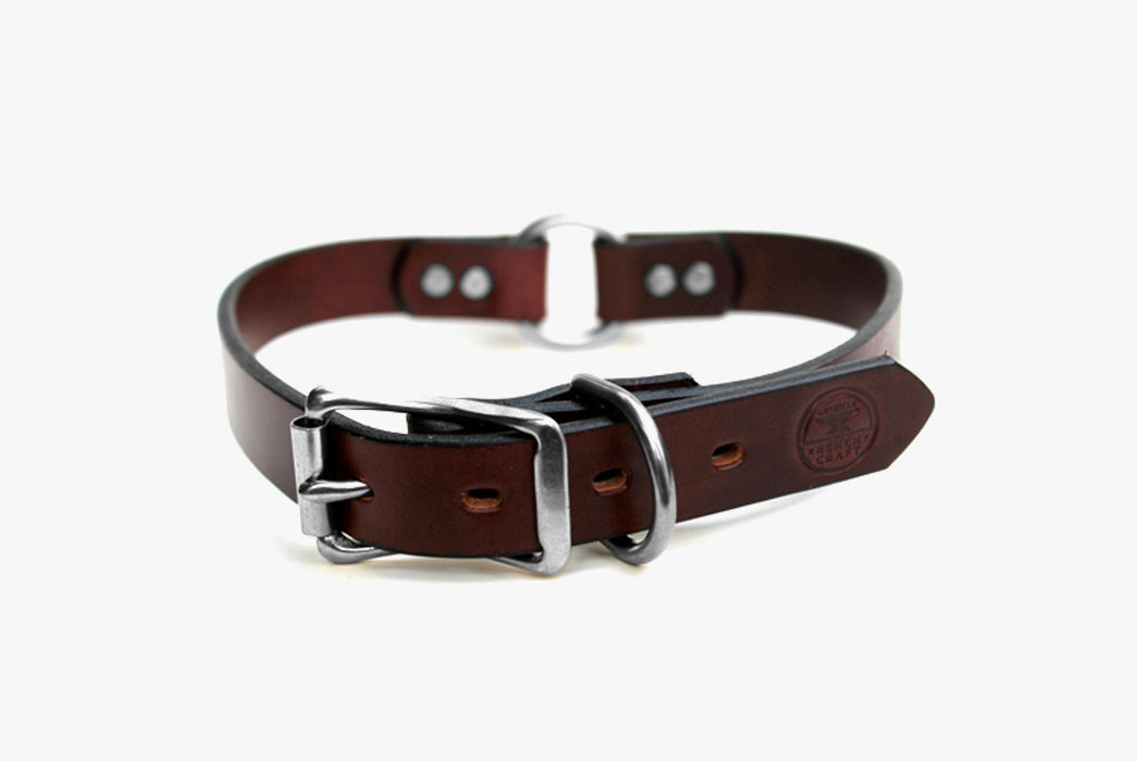 Brown Dog Collar with Silver Buckle - Standing Up
