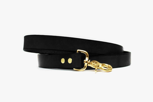 Black Dog Leash - Coiled Up - Front View