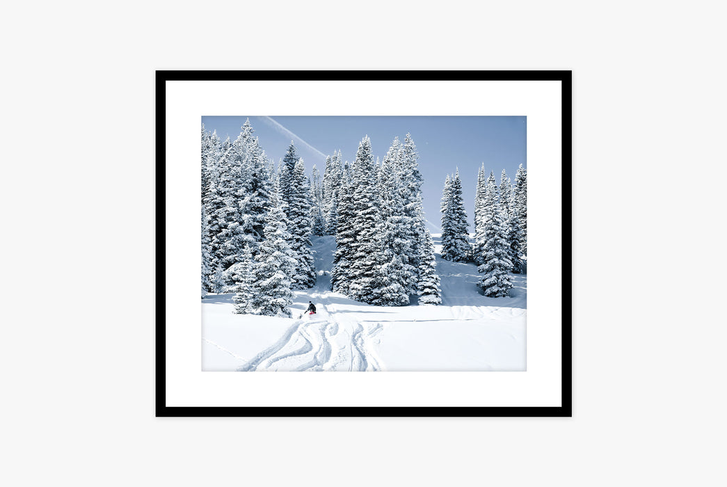 Framed photo of snowy trees and snowboarder