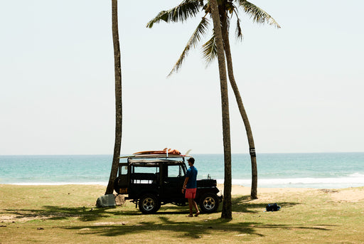 Unframed photo of a truck in front of three palm trees with the beach in the background