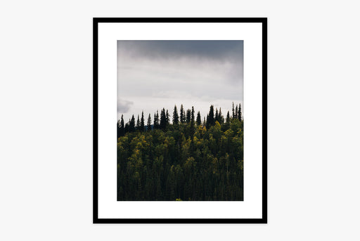 Treeline Print - framed photo of a dark treeline with a cloudy sky in the background