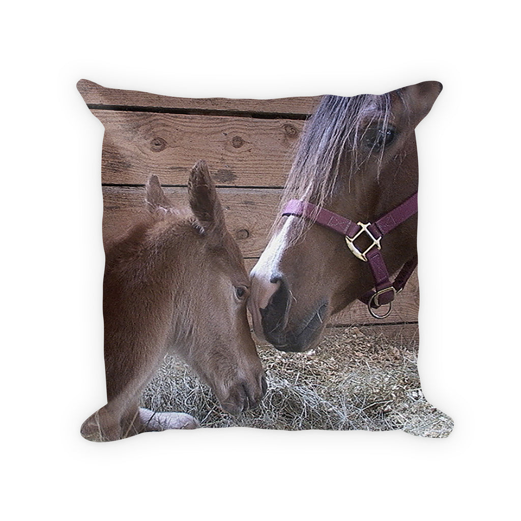 Horse gift decorator pillow mare and foal