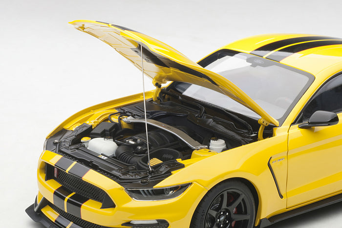 Ford Mustang Shelby GT350R | 1:18 Scale Model Car by AUTOart | Engine Detail
