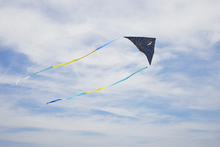 Delta Kite Navy Crystal