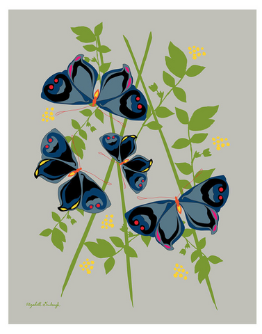 Butterfly Print :: framed or unframed