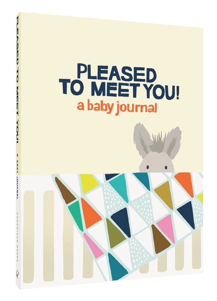 Pleased to Meet You! a baby journal