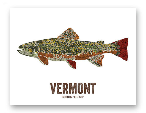 Vermont State Fish, Brook Trout